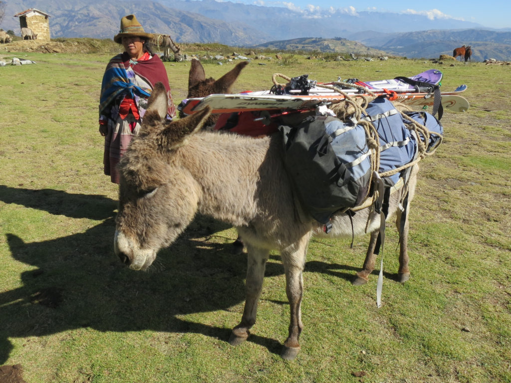 Donkeys loaded for the approach