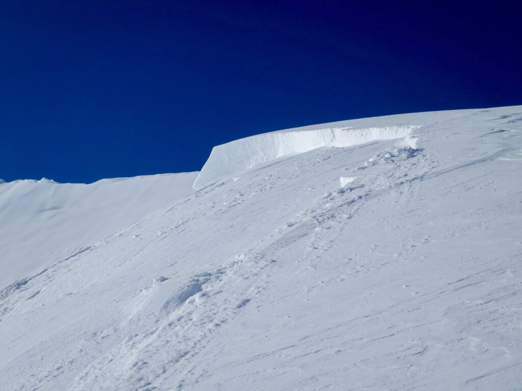 Skier Remote Avalanche in Rogers Pass